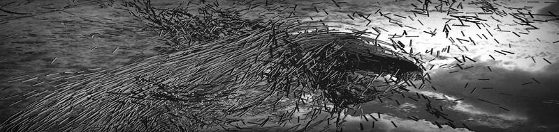 fr-059 2011-08-12 23-55-07-90.jpg