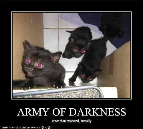 Funny-Pic´s (Kuriose-Bilder)-funny-pictures-army-darkness-rather-cute ...