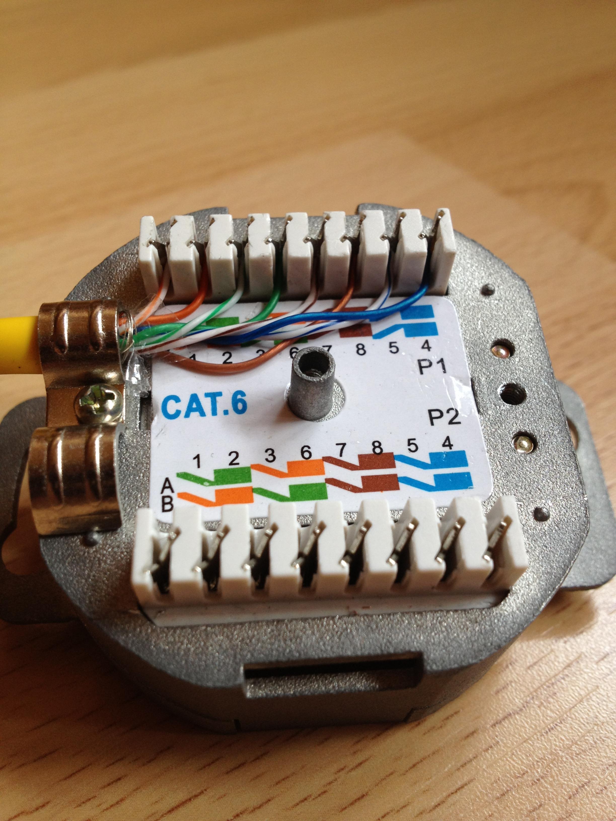 Cat  Datendose