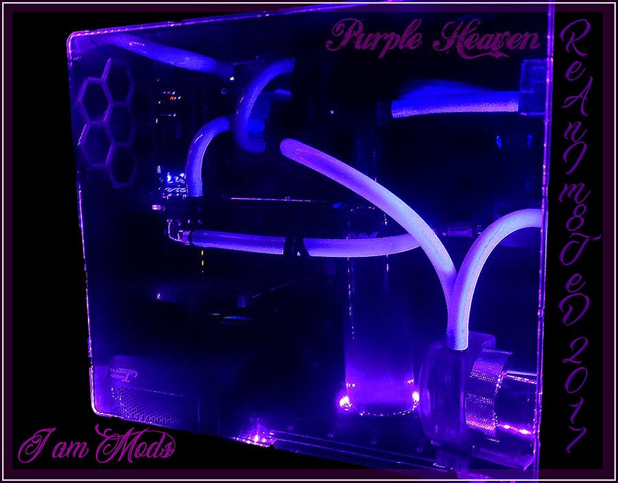 Purple Heaven Main Classy mini.png