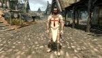 Knights Armor2.jpg