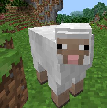 Schafcon Das Schaf Aus Minecraft Von Globog Und Nefle