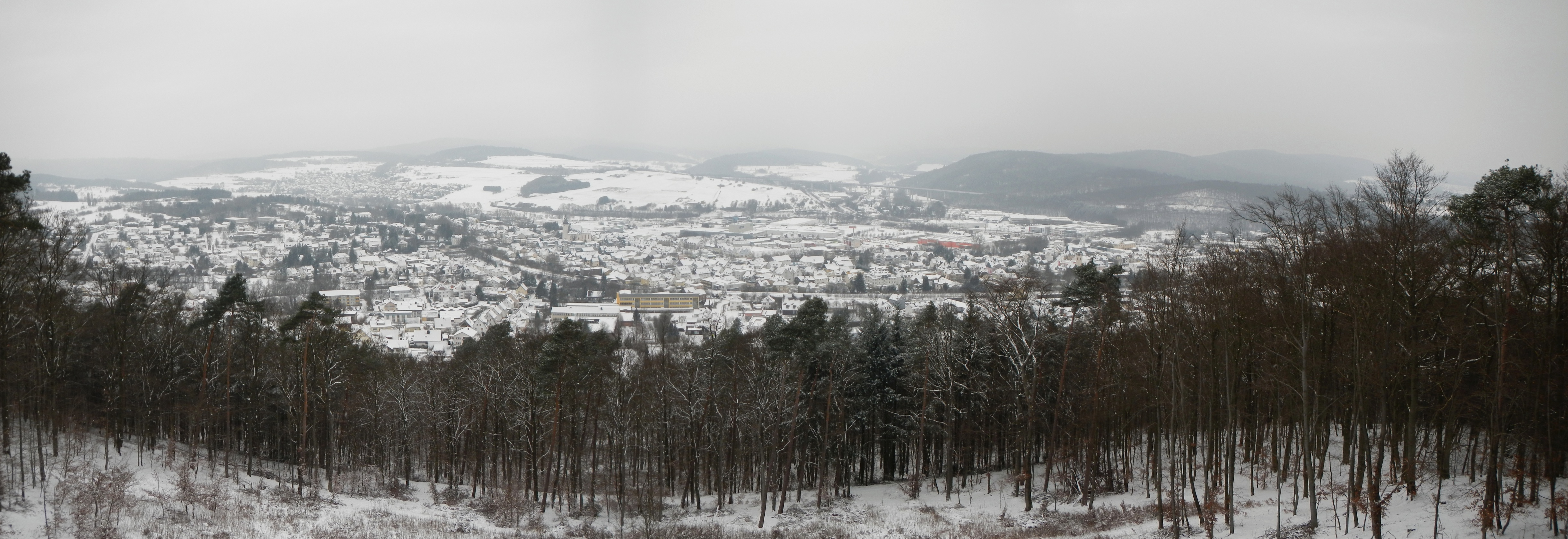 Panoramabild meiner Heimat im Winter